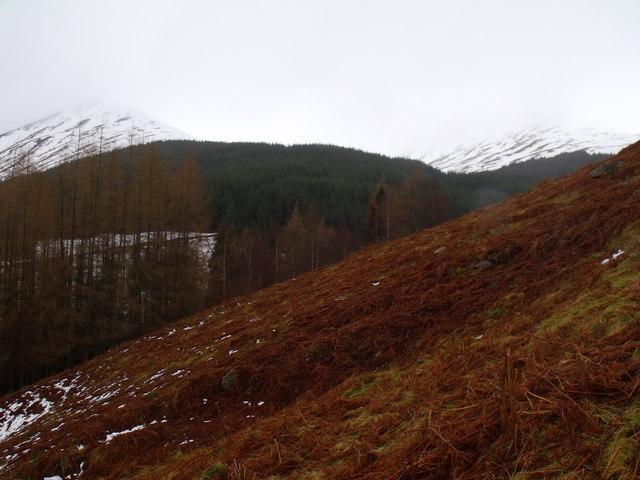 Lower slopes of Carn Gorm in Glen Lyon
