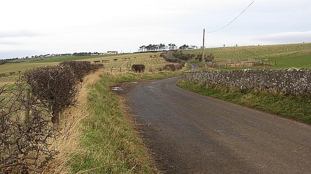 West Loch Road, Coldingham