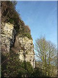 SY7072 : Cliff, north east Portland by Tom Jolliffe
