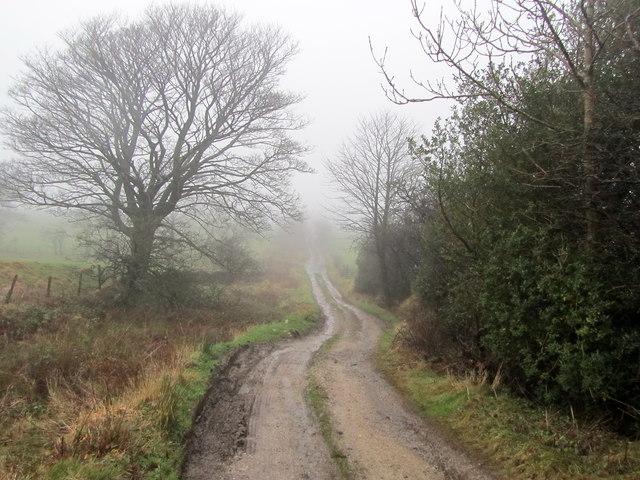 Coal Pit Lane