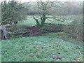 SJ6756 : Leighton Brook by  Moston-Harratt