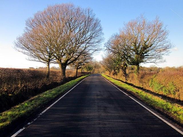 Lane near Great Barrow