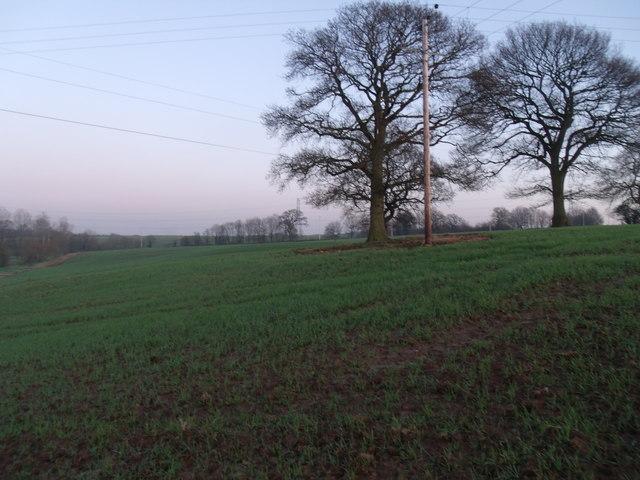 Brassy Bank Looking towards Pyms Lane