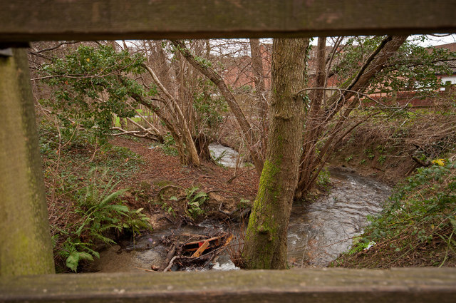 The view downstream from a footbridge on Coney Gut