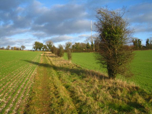 Path across Stubbington Down