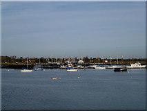 TQ8596 : River View by terry joyce