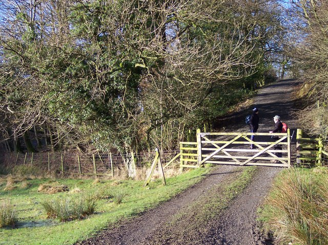 Gate on farm track at Long Wood