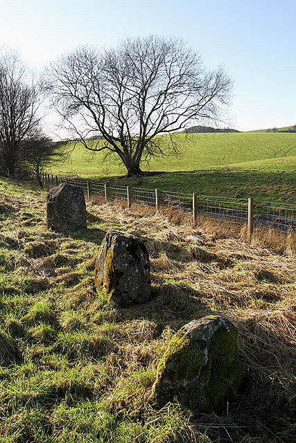 Standing stones by the A701 south of Moffat