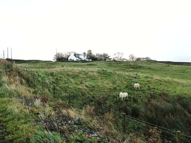 Looking across the fields to St. Cuthbert's Cottage