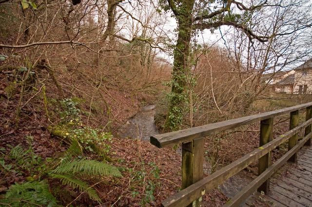 The view upstream from a footbridge on Coney Gut near Primrose Avenue