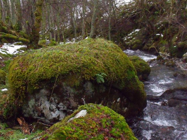 Mossy boulder by Allt Bhrachain above Camusvrachan in Glen Lyon