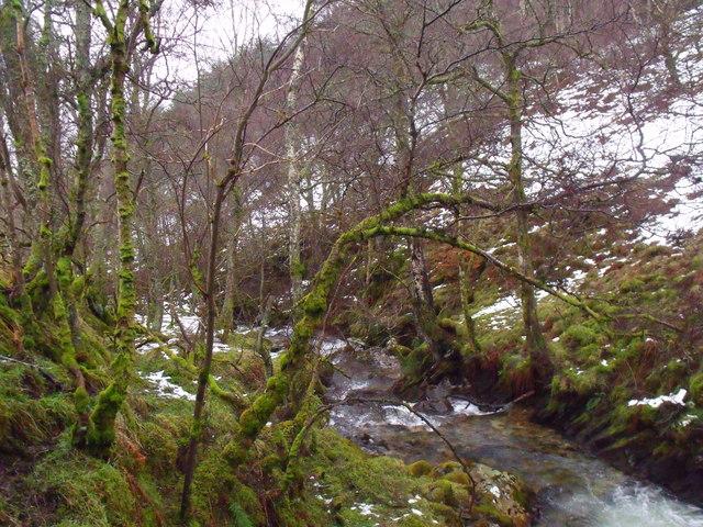 Dreich wintry banks of Allt Bhrachain above Glen Lyon