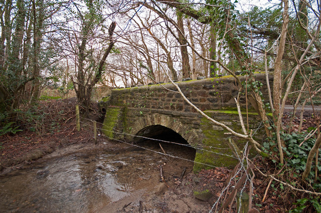 A bridge on Coney Gut near Maidenford as seen from upstream