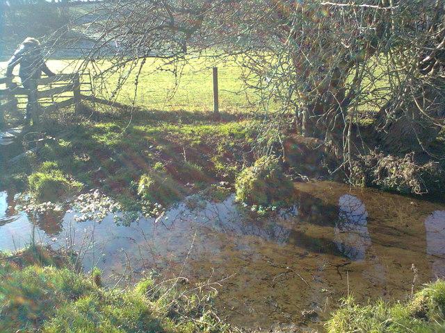 Reflections in the stream, near Manor Farm