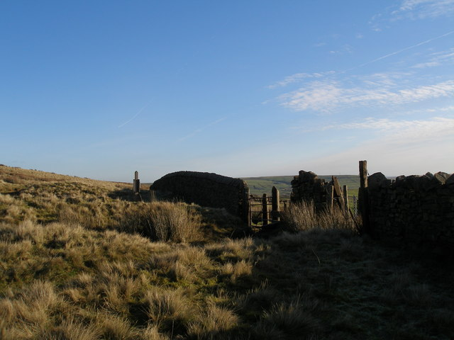 Edge of open country at Meadow Head