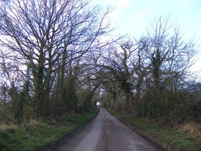 Looking towards Haw Wood Farm Caravans & the A12