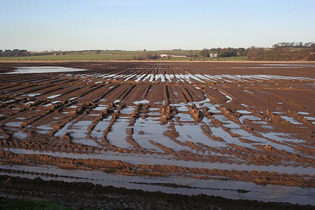 Frozen Flooded Flat Field