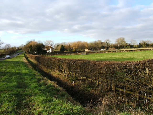 Verge, ditch, hedge and fence