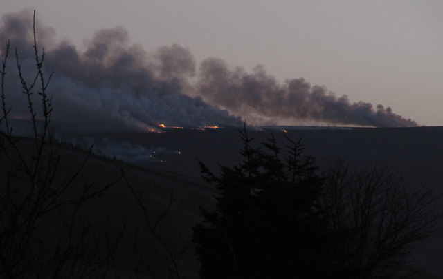 Late afternoon heather burning