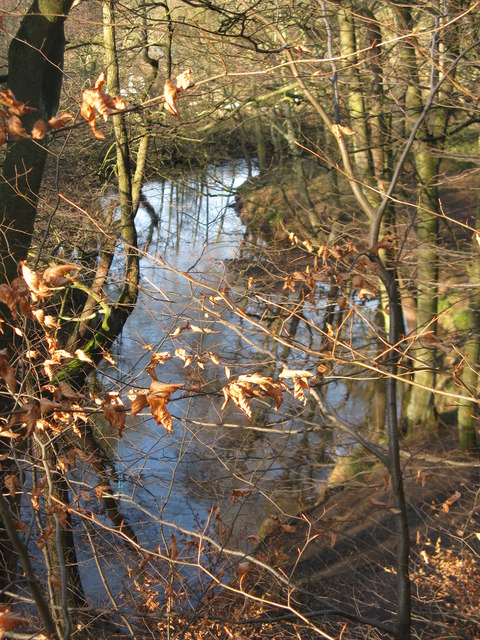 River Don at Forge Wood
