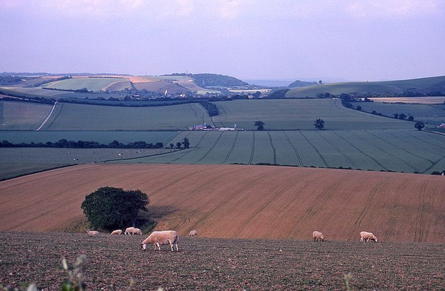 Farmland near Old Winchester Hill