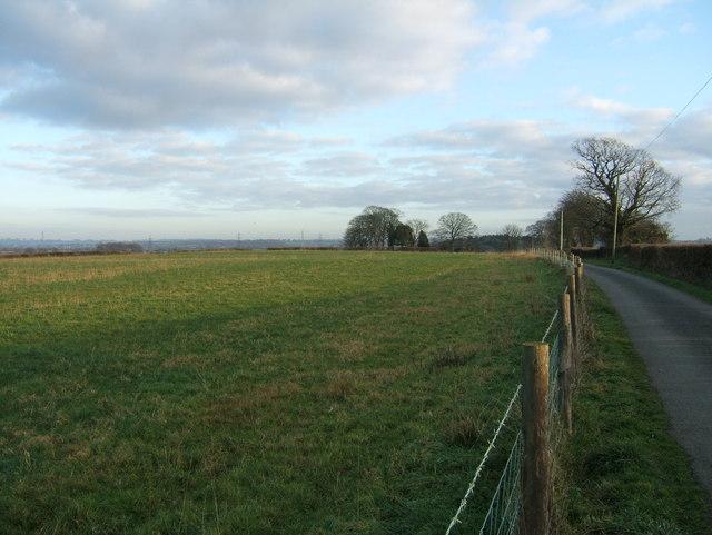 Field by Woodside Road
