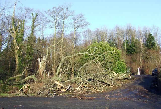 Storm damage at Inverkip
