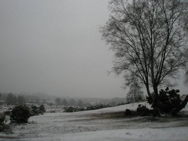 Snow on Stagbury