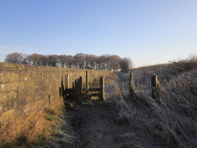 A path leading to Lawns Lane