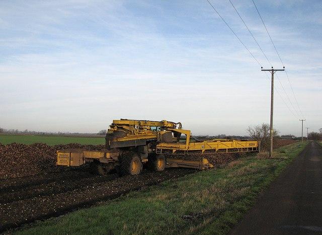 Beet loader waiting for lorries