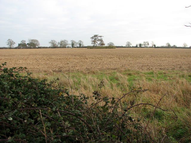 Barnbrick pit, South Acre
