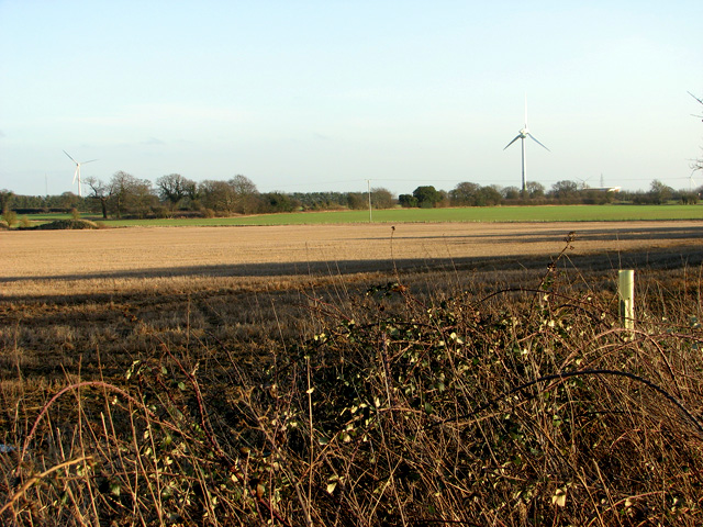 Cultivated fields west of Swaffham