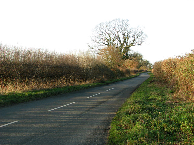 Country lane from Swaffham to Narford