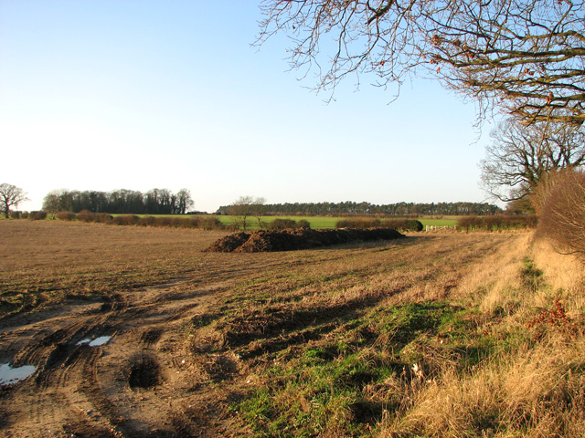 Entrance into a field north of the A47 road (Swaffham)