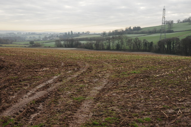 Arable field above Pant Brook