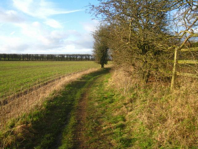 Wayfarer's Walk approaching White Hill