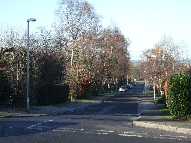 Moseley Wood Lane, Cookridge