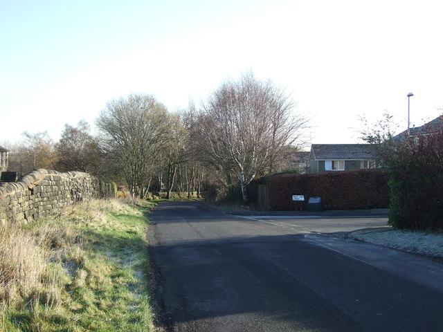 Holt Lane heading east