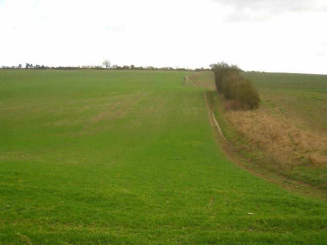 Long view of Wayfarer's Walk
