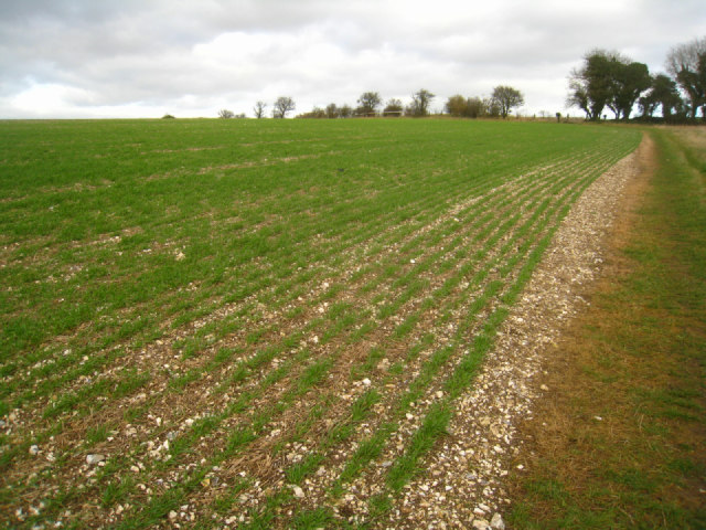 Path on Stubbington Down