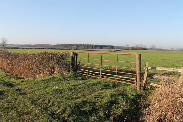 Field Gate, with Willingham Woods in distance