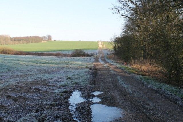Frosty Track along Hopyard Plantation