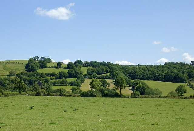 Pasture and hillside south-west of Tregaron, Ceredigion