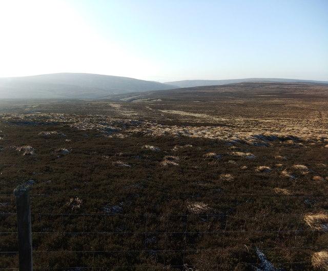 Across the fell to Crook Burn