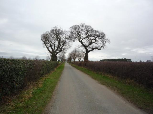Unnamed road heading towards Moor Lane
