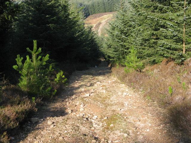 Steep hillside track on Hill of Blacklodge