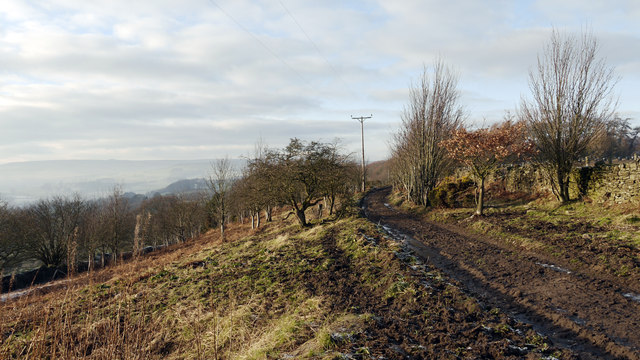 Route of footpath above Heartwell Plantation