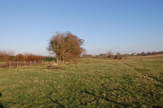 Fields near Decoypond Ditch