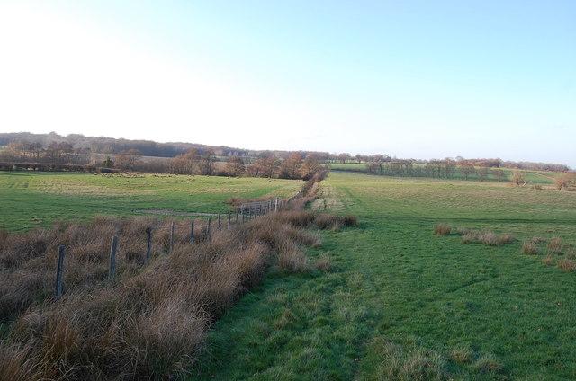 Fields near Shepherd's Farm
