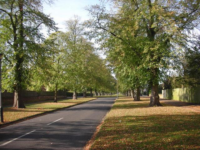 Beverley Road